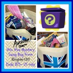 Mystery Swag Bag Giveaway (Ends 8/5/13)