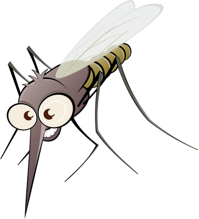 Bugs that look like mosquitoes