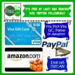 Help me celebrate hitting 40,000 fans on Twitter ~ Win a $100 Visa, Amazon or Paypal GC (Ends 11/05/14)