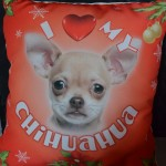 iLeesh Pet Products Christmas Pillow {Review}