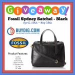 Fossil Satchel Bag
