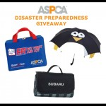 Pet Owners, When Disaster Strikes, Are you Ready? #NatlPrep (and Giveaway)