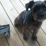 Bil-Jac Gooberlicious and Little Jacs are the Perfect Dog Treats