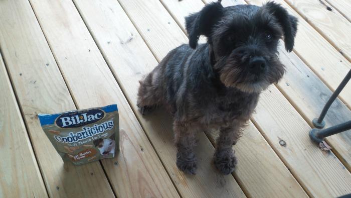Dog Training Treats Bil Jac