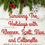 Surviving The Holidays with Kleenex, Scott, Viva and Cottonelle #HolidayNecessities