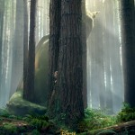 Pete's Dragon in Theaters August 12th ~ Get a Sneak Peek NOW #PetesDragon