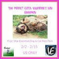Perfect Catch Pets Valentine's Day Giveaway