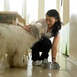 Celebrate National Pet Week with Bil-Jac