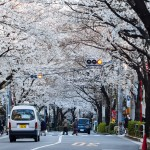 A Walk Through Harajuku – The Tokyo Tourist Guide