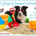 Dog Days of Summer Giveaway Hop – Win $20 Petco Gift Card