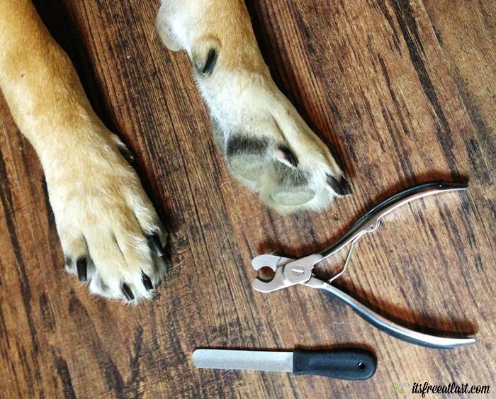 MIUPET Professional Nail Clipper Set