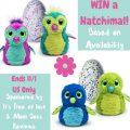Hatchimal Giveaway!