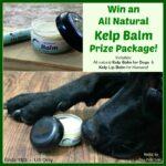 Kelp Balm Prize Package Giveaway!