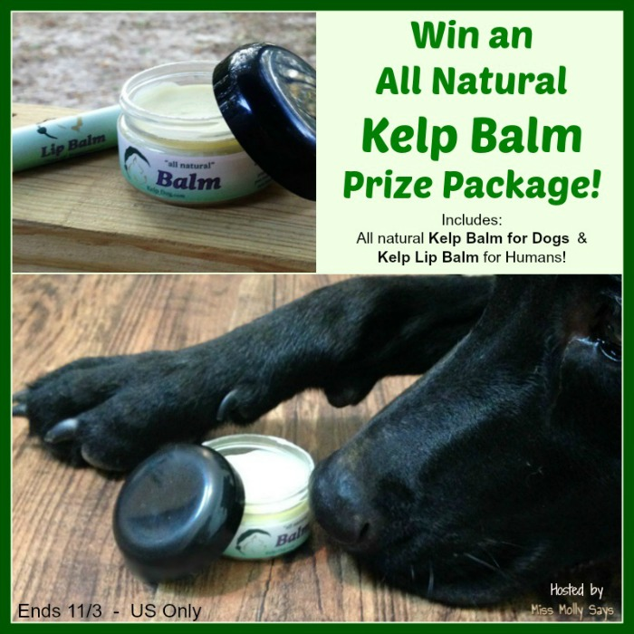Win All Natural Kelp Balm Prize Package from Kelp Dog