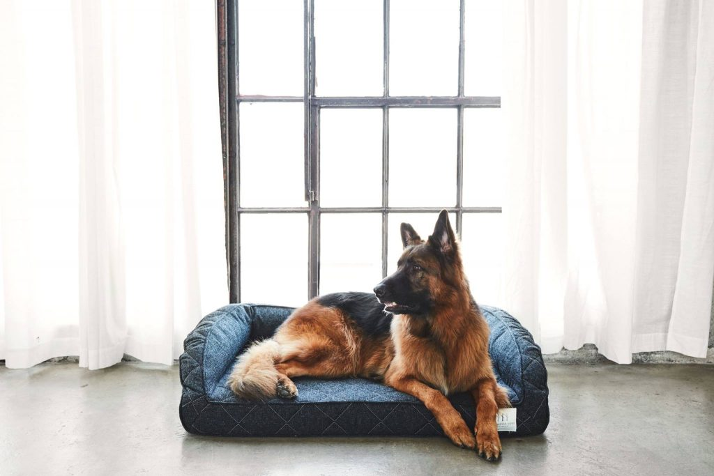 Brentwood Homes Pet Bed
