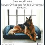 Brentwood Home Runyon Orthopedic Pet Bed (arv $200)!