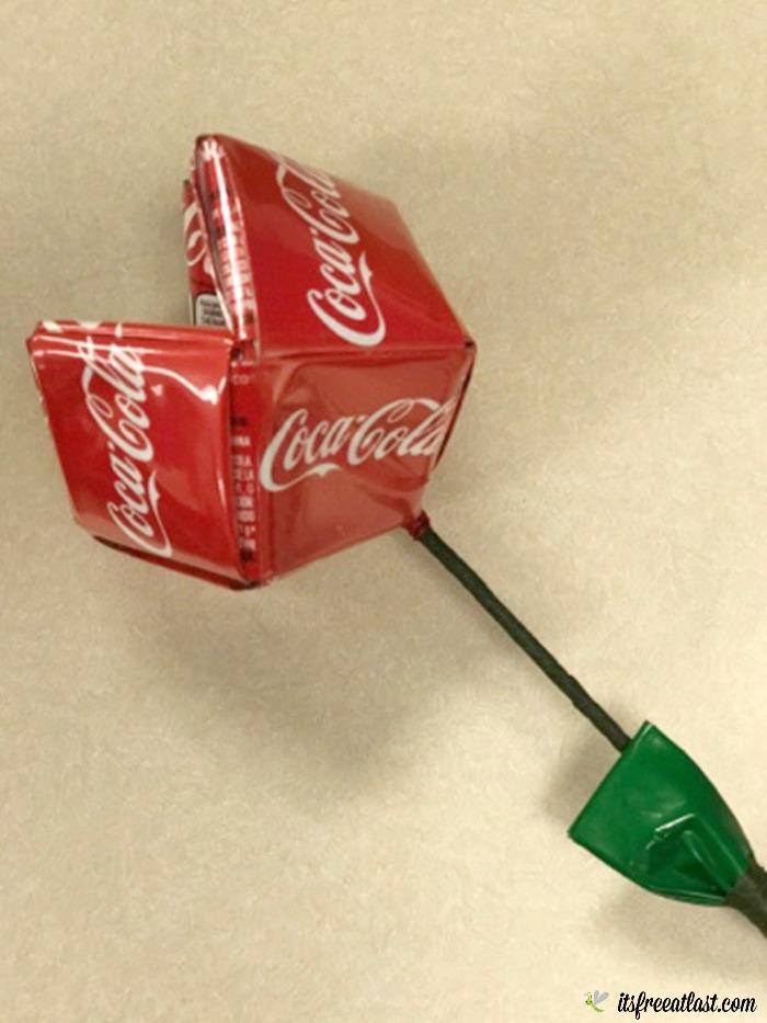 Coca-Cola's 5by20 Initiative