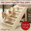 Win Solvit PupSTEP Plus Stairs #Petpalooza2
