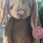 My Baby's Heartbeat Bunny Perfect Shower Gift
