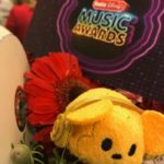 Host an Radio Disney Music Awards Party This Weekend – #RDMA