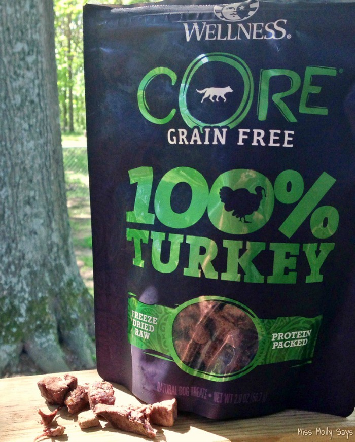 Wellness Core Grain Free Dog Treats