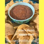#12Daysof PIcnic Ideas {Day 4} Black Bean Hummus Dip
