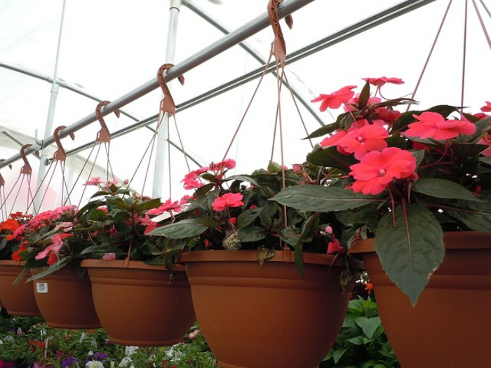 Youtube Hanging Flower Baskets : Sprucing up my patio for summer with kohl s savings from