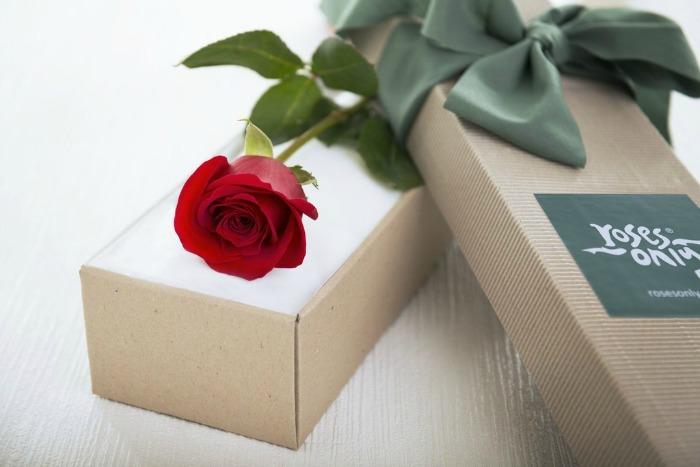 Roses Only UK red stemmed rose