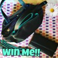 Win mywalit Handbag and Wallet! $500 arv