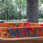 Dog Collar World has Gorgeous Custom Embroidered Dog Collars