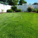 4 Steps To An Even Better Backyard