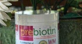 Prebiotin – Helping Probiotics Perform Better