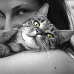 Giving your Pet the Send-off They Deserve