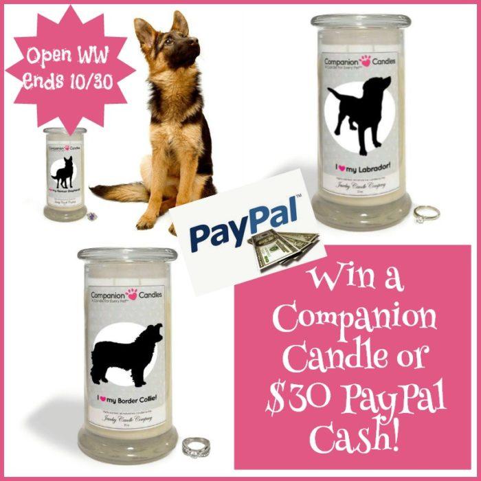 companion candle