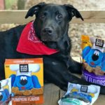 Blue Dog Bakery All-Natural Dog Treats are Woofalicious #MegaChristmas17