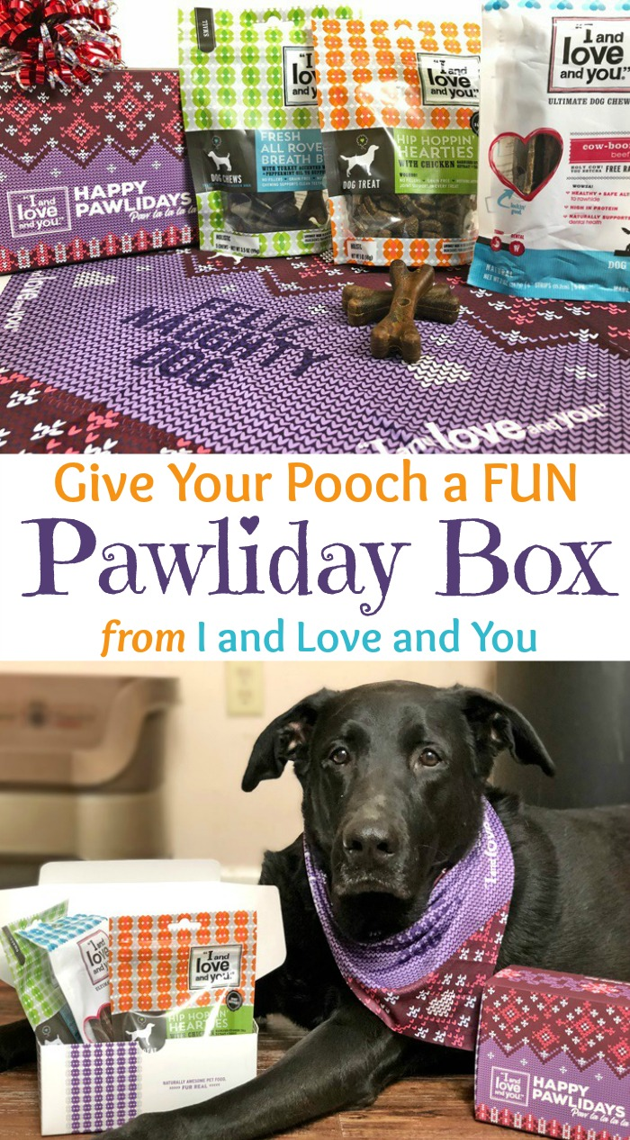 Give Your Pooch a FUN Pawliday Box from I and Love and You
