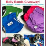 Pet Parents Dog Diapers & Belly Bands Giveaway